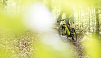 EM-Rocky-Mountain-Altitude-Powerplay-Carbon-AB_20170515_MountainBIKE-Magazin_001-629